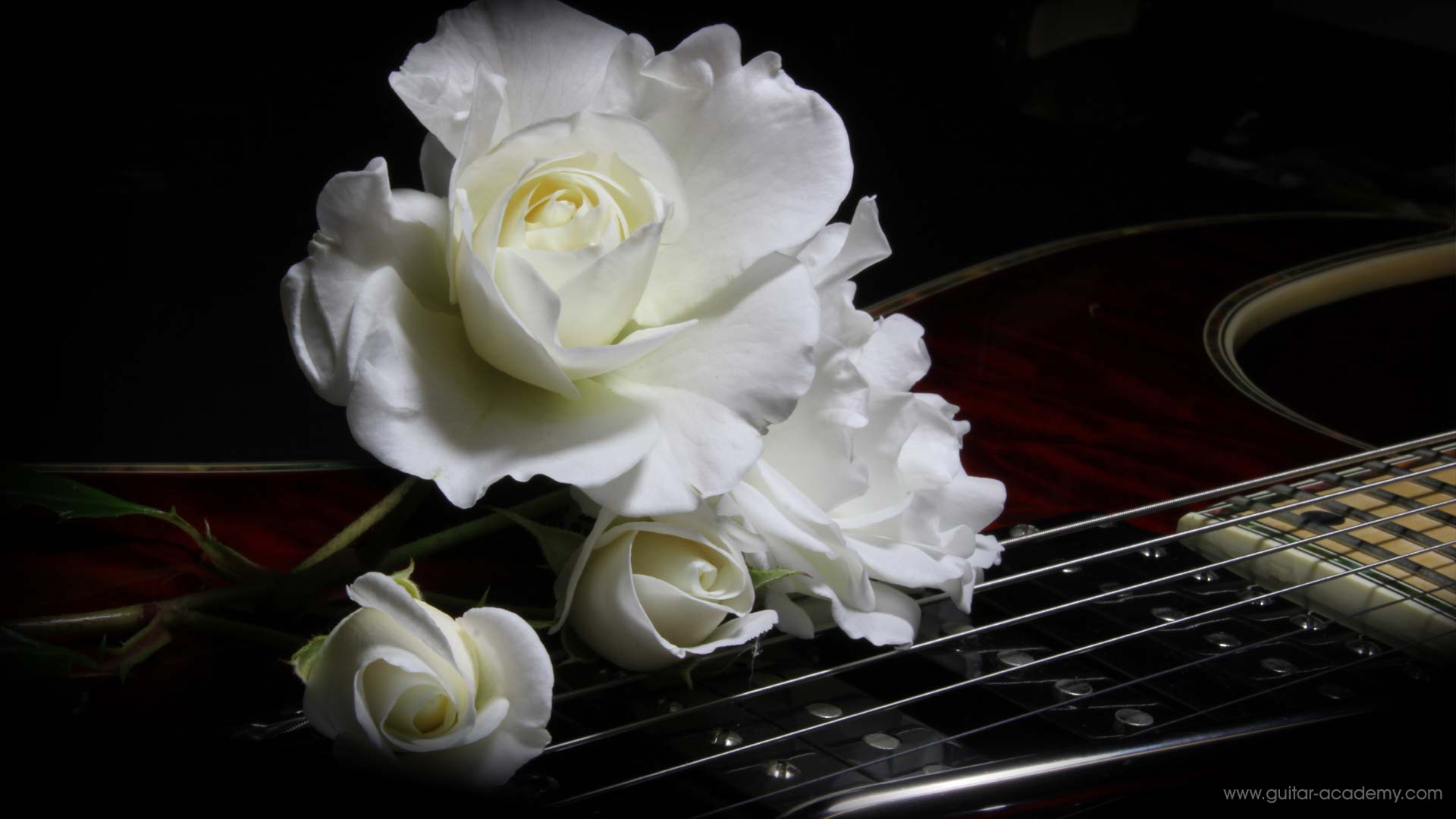 7 string guitar with rose